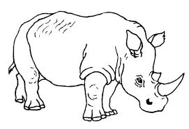 gambar gambar sketsa hewan berkaki 4 gambarpedia mewarnai hutan di