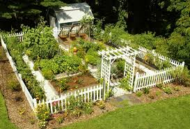 Design A Vegetable Garden Layout by Interesting Home Vegetable Garden Designs 84 For Your Home