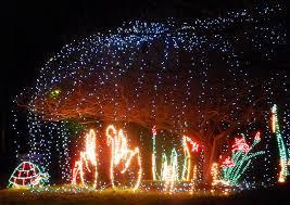 hopeland gardens christmas lights christmas lights merry christmas columbia