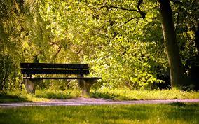 park bench high quality wallpaper 866503