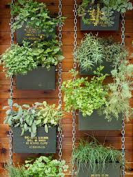 vertical gardens vertical garden ideas