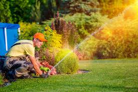 How To Do Landscaping by The Benefits Of Hiring A Professional Landscaper