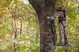 new treestands and blinds for fall archery business