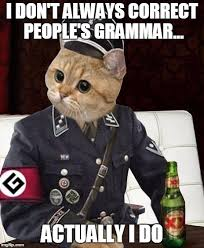 Grammar Meme Generator - most interesting grammar cat meme generator imgflip