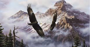 flying american eagle wallpaper wallpaper flying american eagle wallpaper