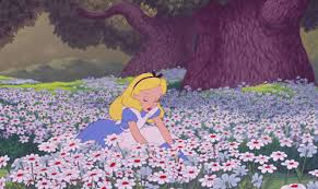 alice wonderland spring gif u0026 share giphy