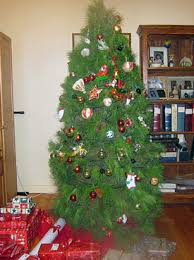 advent calendar day 14 christmas tree shapes christmas tree farm