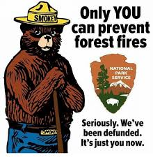 Only You Can Prevent Forest Fires Meme - 25 best memes about only you can prevent forest fires only you