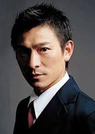 Andy Lau Blind Detective Dvd Hong Kong Movie 盲探 Blind Detective 刘德华 Andy Lau 郑秀文