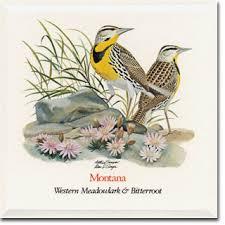 Flower And Bird - montana