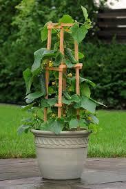 garden ideas hanging wall planters indoor garden kit vertical