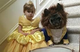 Pet Halloween Costumes Dogs 10 Adorable Disney Pet Halloween Costumes Smile