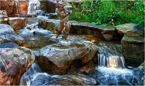 Aquascape Biofalls Biofalls Biological Pond U0026 Waterfall Filtration Hamden New Haven