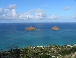 Hawaii Travel Network images Hawaii diving maui kona oahu hawaii scuba diving hawaii JPG