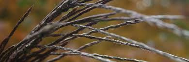 garten und landschaftsbau kiel home karstens garten und landschaftsbau gmbh