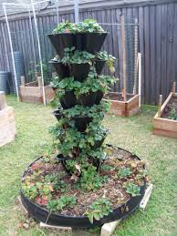 Ideas For Container Gardens Container Gardening Vegetables Ideas Home Outdoor Decoration