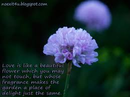 Nature Love Quotes by Download Flower And Love Quotes Homean Quotes