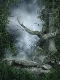 imagenes de paisajes lluviosos lluvioso paisaje con un árbol foto de stock fairytaledesign