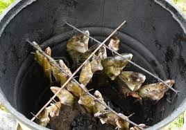 cuisiner le gardon pêche pris en acier poissons du lac bol gardon brème et la tanche