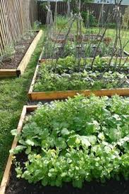 Creative Vegetable Gardens by 10 Cheap But Creative Ideas For Your Garden 1 Vegetable Garden