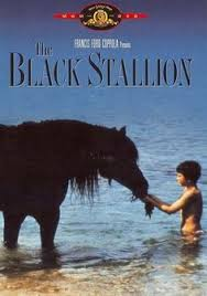 the young black stallion great movie movies pinterest the