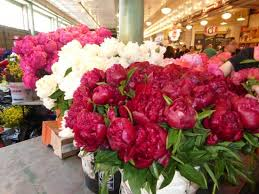 peonies for sale peonies for sale picture of pike place market seattle tripadvisor