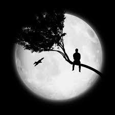 moon tree free image on pixabay