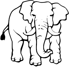 black and white elephant pictures free download clip art free
