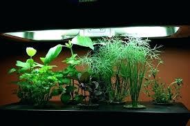 grow light indoor garden indoor garden kit with light indoor light gardening photo credit