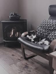 gas fireplaces u0026 gas inserts waltz u0026 sons inc buxton maine