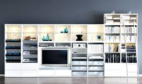 storage cabinets for living room living room storage cabinets with doors sorosconnection info