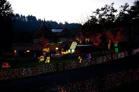 Zoo Lights Oregon by Passengers On A Little Spaceship December 2011