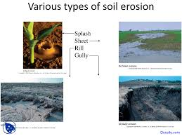 types of soil erosion environmental science lecture slides