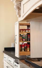 Impressive Spice Rack Organizer In Kitchen Contemporary With - Kitchen cabinet door organizer