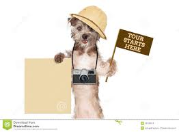 safari guide clipart dog tour guide blank sign stock photo image 50109014