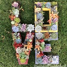 Monogram Planter L O V E Monogram Succulent Planter Set 4 Pieces From