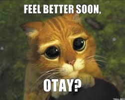 Feel Better Meme - feel better soon otay feel better get well pinterest feel better