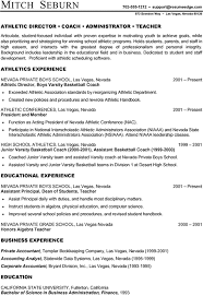 ideal resume innovation design ideal resume format 13 resume formats and tips
