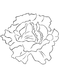 vegetables coloring pages free coloring pages