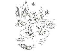 imagenes de un sapo para dibujar faciles de una rana encantada para colorear con niños