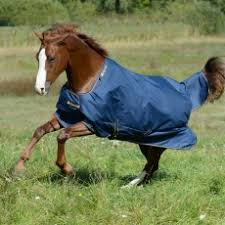 Bucas Irish Leg Warmer Riding Rug Bucas Wychanger Barton