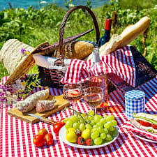 best picnic basket the best picnic baskets on the market in 2018 a foodal buying guide