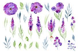 Lavender Roses Watercolor Lavender Roses Flowers By Watercolorflowers