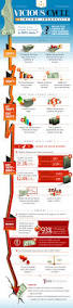 10 best income inequality images on pinterest infographics