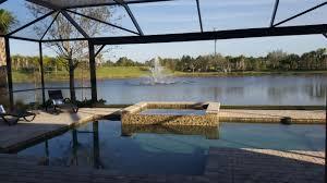 backyard view south florida living