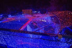 canberra resident creates world u0027s largest christmas lights display