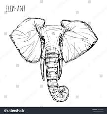 wild animal safari black white elephant stock vector 261539948