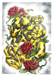 snake n roses by drakhenliche on deviantart
