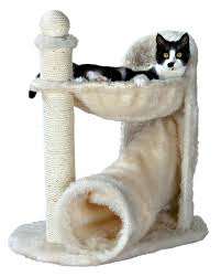 cat furniture your cat needs this affordable furniture right meow cuteness
