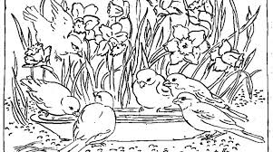 flower garden coloring games flowers and butterflies coloring
